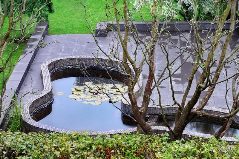 Top View On Well Cared Backyard With Patio And Pond stock image
