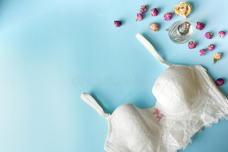 Top view fashion white bra lace lingerie. Set of woman essential accessory and underwear on flat lay. copy space royalty free stock image