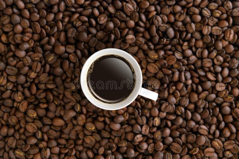 Top view white coffee mug or cup in coffee beans. royalty free stock images