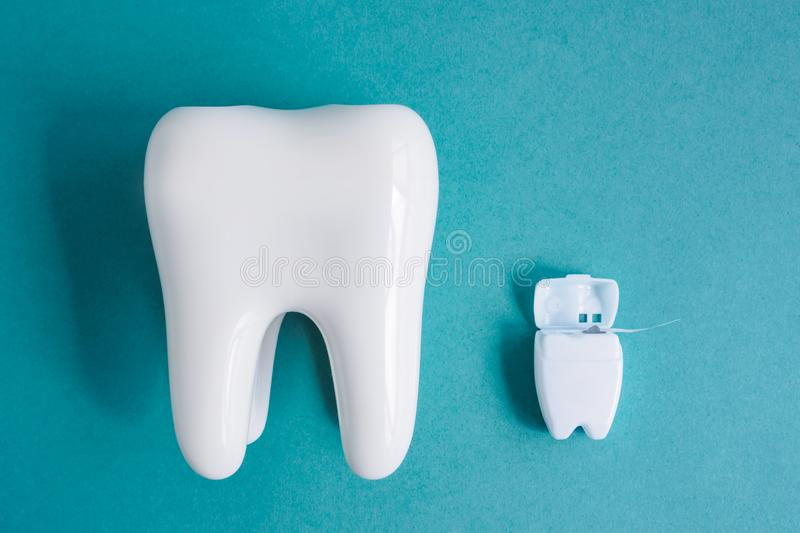 Top view of white healthy tooth model and dental floss in white container on blue background.  stock image