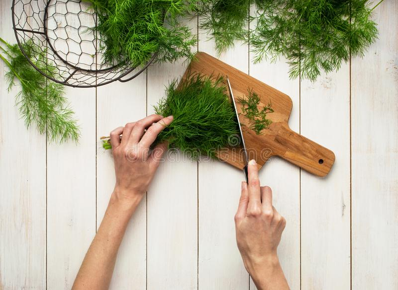 Top view of a womans hand, fresh dill on a cutting board, knife and bunches of dill on a white wooden table. Fresh greens, seaso. Ning, the process of cooking, a royalty free stock photo