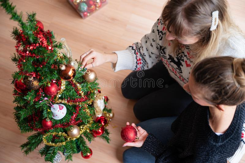 Young lesbian couple decorating Christmas tree together stock image