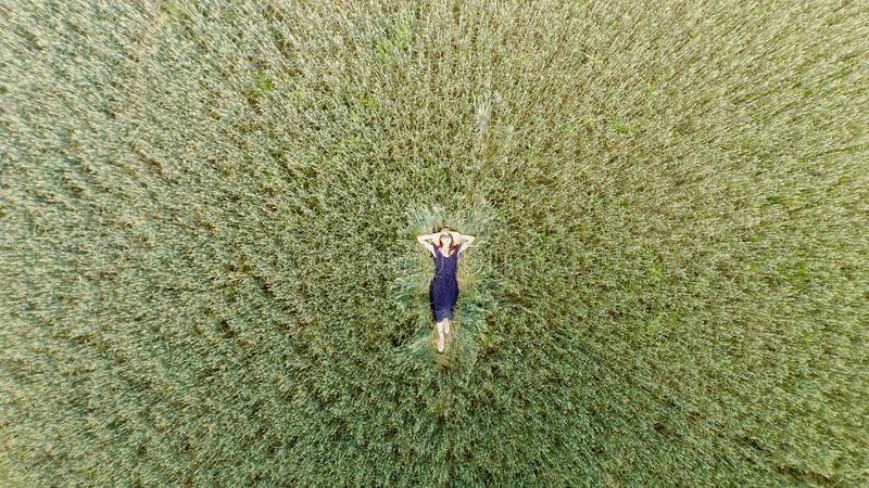 Top view of young woman in a dress relaxing on the wheat field. Photo from the drone, aerial, summer, above, park, garden, girl, green, landscape, leisure stock photography