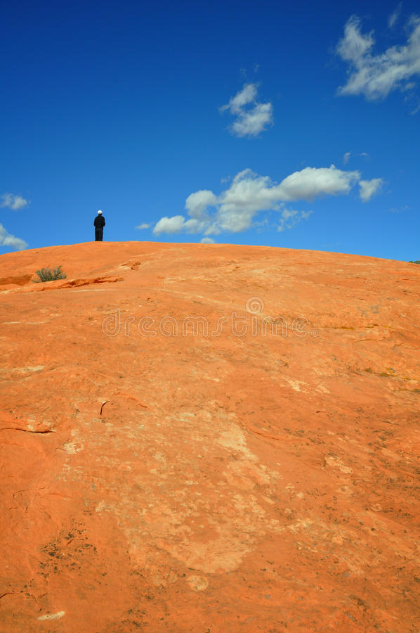 Download On top of the wolrd stock photo. Image of figure, destiny - 12161952