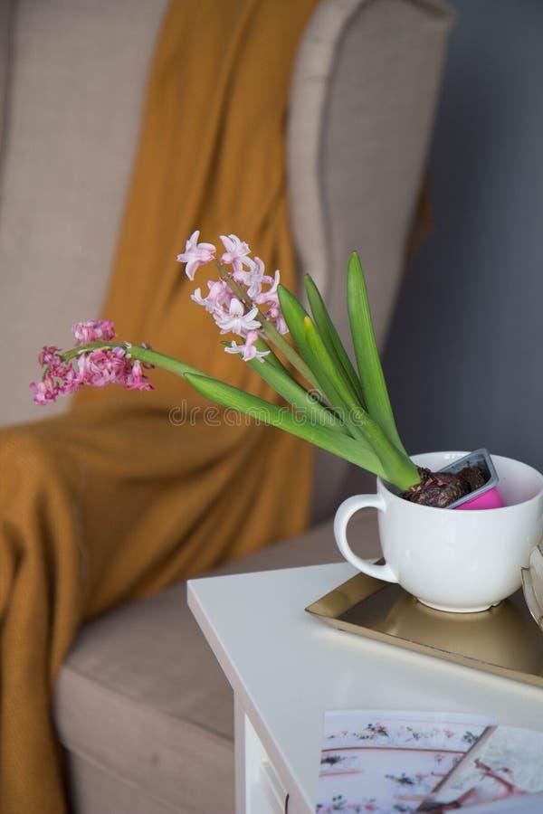 Topf mit einer Blume auf dem Tisch lizenzfreies stockbild