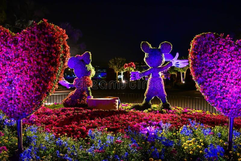 Topiaries de Mickey e de Minnie em um cen?rio colorido em Epcot em Walt Disney World 2 imagem de stock