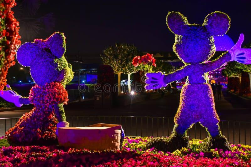 Topiaries Mickey и Минни на романтичный день пикника на предпосылке ночи на Epcot в мире 1 Уолт Дисней стоковая фотография