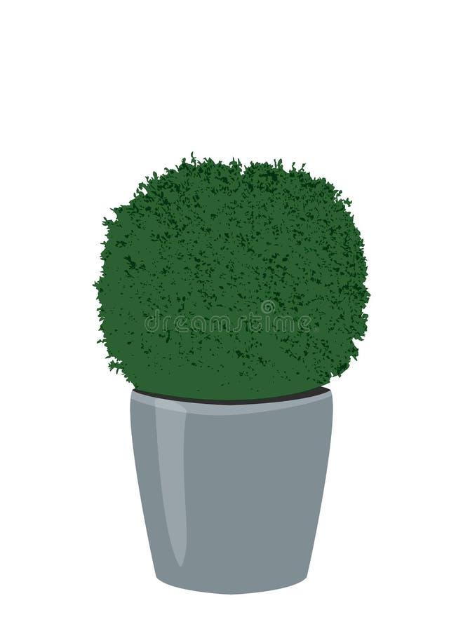 Topiary δέντρο πυξαριού flowerpot, διανυσματικό eps 10 ελεύθερη απεικόνιση δικαιώματος