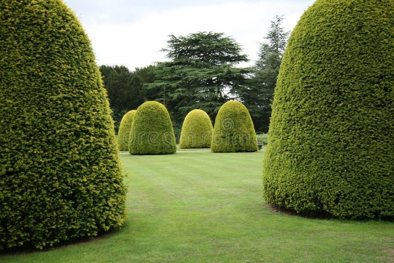 Topiary imagen de archivo libre de regalías