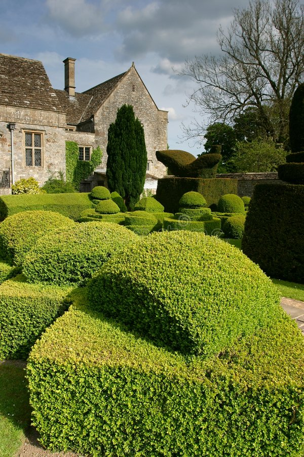 Download Topiary 2 stock image. Image of bush, trees, country, shape - 317689