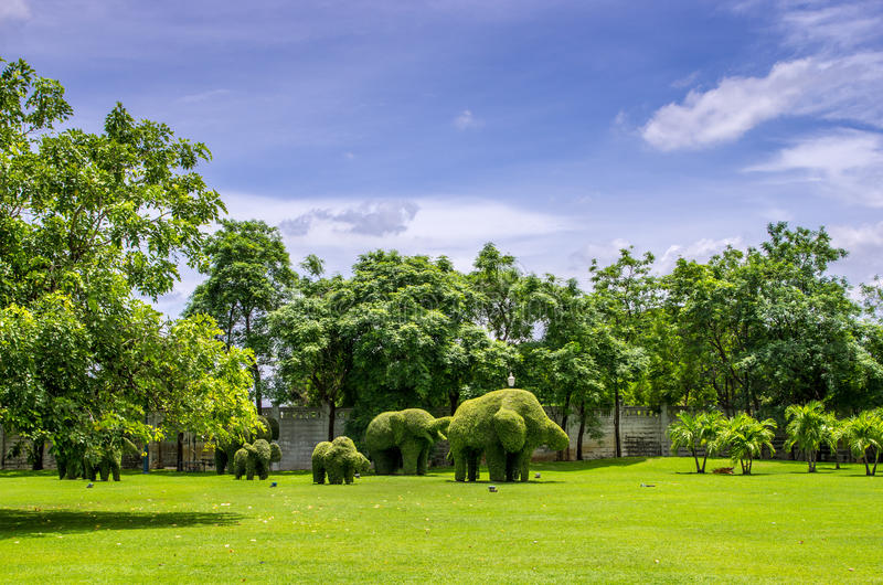 Topiary, Elephants Trimmed Out Of Shrubs Editorial Image