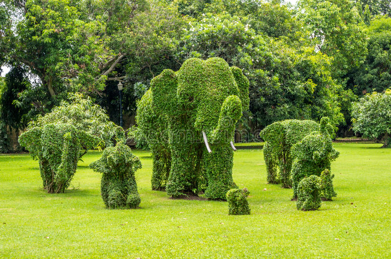 Download Topiary, Elephants Trimmed Out Of Shrubs Editorial Photo - Image: 33787751