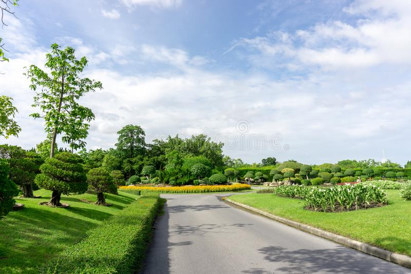 Topiary garden style, asphalt road in the gardens with geometric shape of bush and shrub, decoration with colorful flowering plant. Blooming, green leaf of stock photos