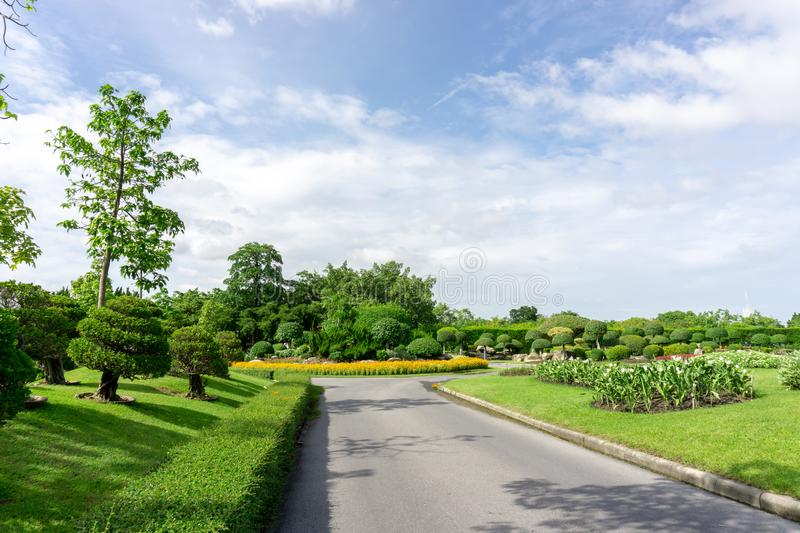 Topiary garden style, asphalt road in the gardens with geometric shape of bush and shrub, decoration with colorful flowering plant. Blooming, green leaf of royalty free stock image