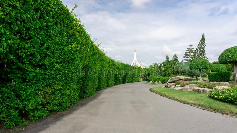 Topiary garden style, asphalt road in gardens with hedge round shape of bush and shrub, decoration with greenery wall plant. White stone, Philippine tea plant royalty free stock images