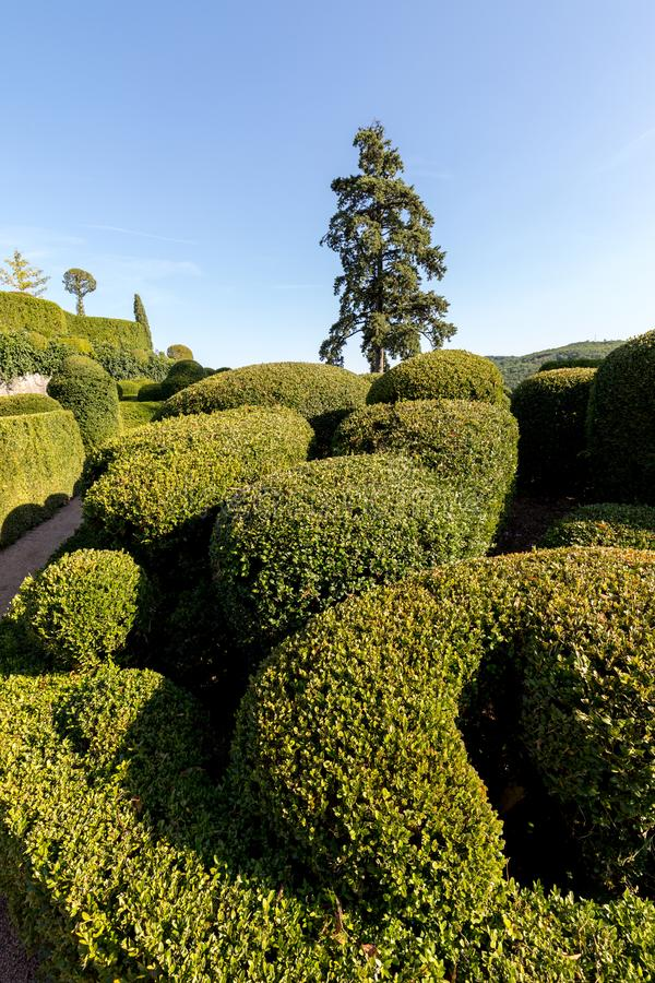Topiary in the gardens of the Jardins de Marqueyssac in the Dordogne region of France. Topiary in the gardens of the Jardins de Marqueyssac in the Dordogne royalty free stock photo
