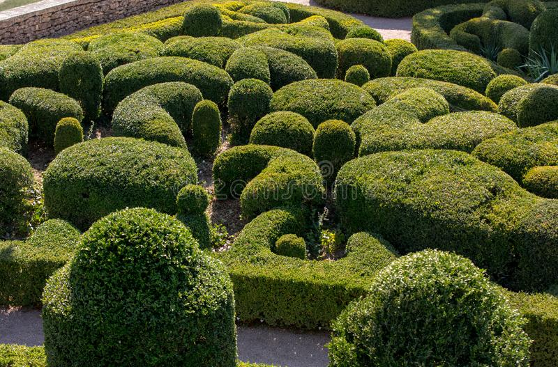 Topiary in the gardens of the Jardins de Marqueyssac in the Dordogne region of France.  stock photos