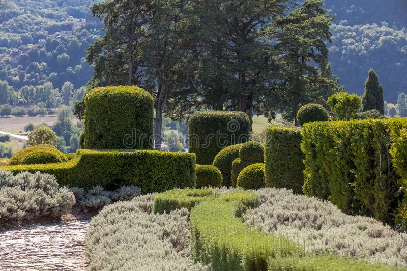 Topiary in the gardens of the Jardins de Marqueyssac in the Dordogne region of France.  stock image