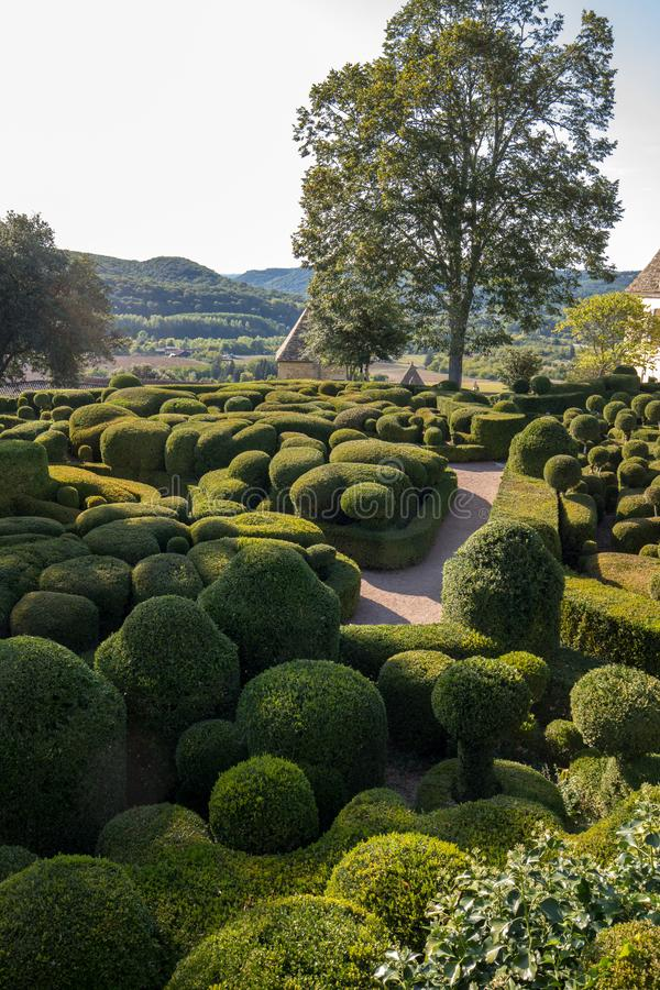 Topiary in the gardens of the Jardins de Marqueyssac in the Dordogne region of France.  royalty free stock photo