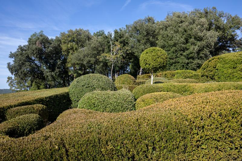 Topiary in the gardens of the Jardins de Marqueyssac in the Dordogne region of France. Topiary in the gardens of the Jardins de Marqueyssac in the Dordogne stock images
