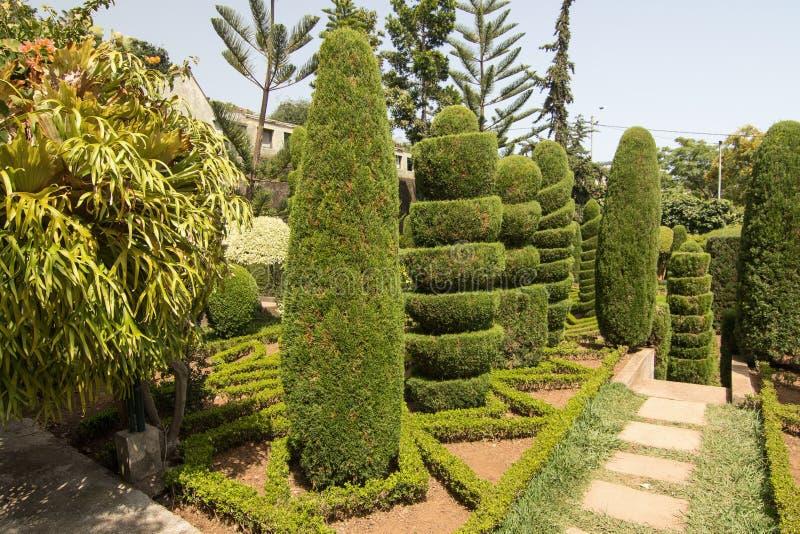 Topiary im botanischen Garten von Funchal, Madeira-Insel lizenzfreies stockfoto