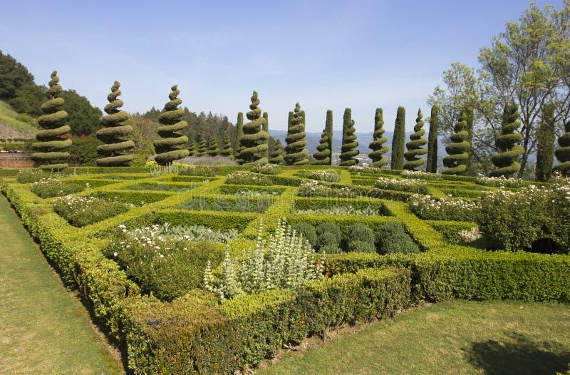 Topiary Kształtuje teren w Formalnym angielszczyzna ogródzie zdjęcia royalty free
