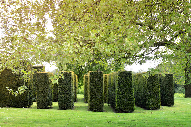 Topiary stock photography
