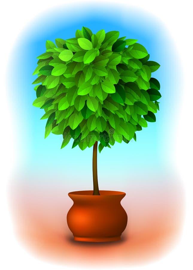 topiarytreevektor stock illustrationer