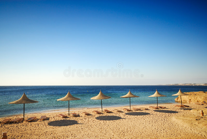 Download Topical beach stock photo. Image of hawaii, ocean, destination - 4883966