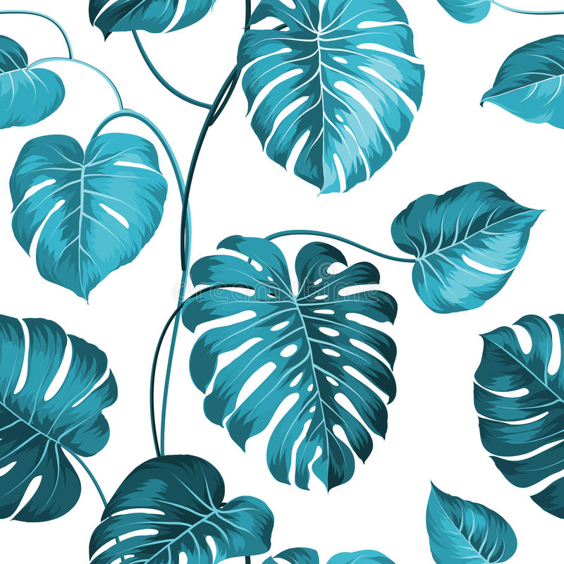Topical palm leaves stock illustration