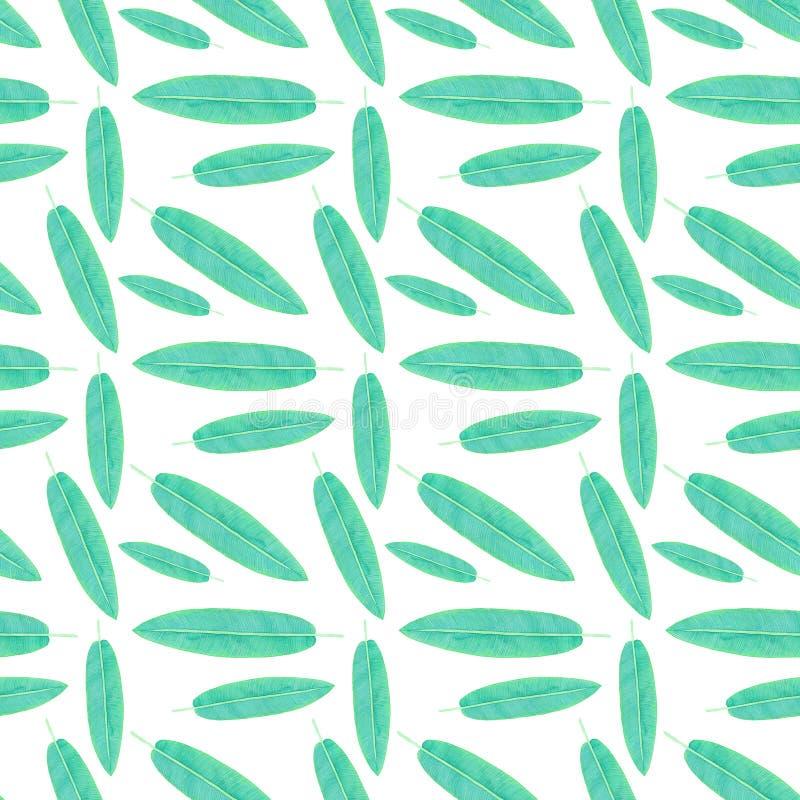 Topiczny liść Bezszwowy akwarela wzór ilustracja wektor