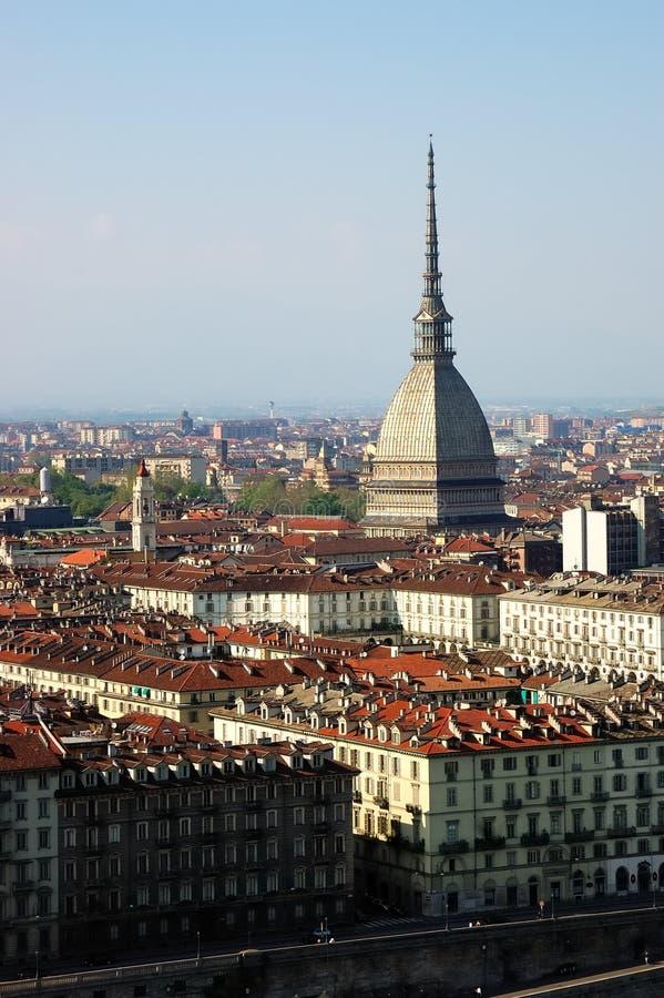 Topo de Turín fotografía de archivo libre de regalías