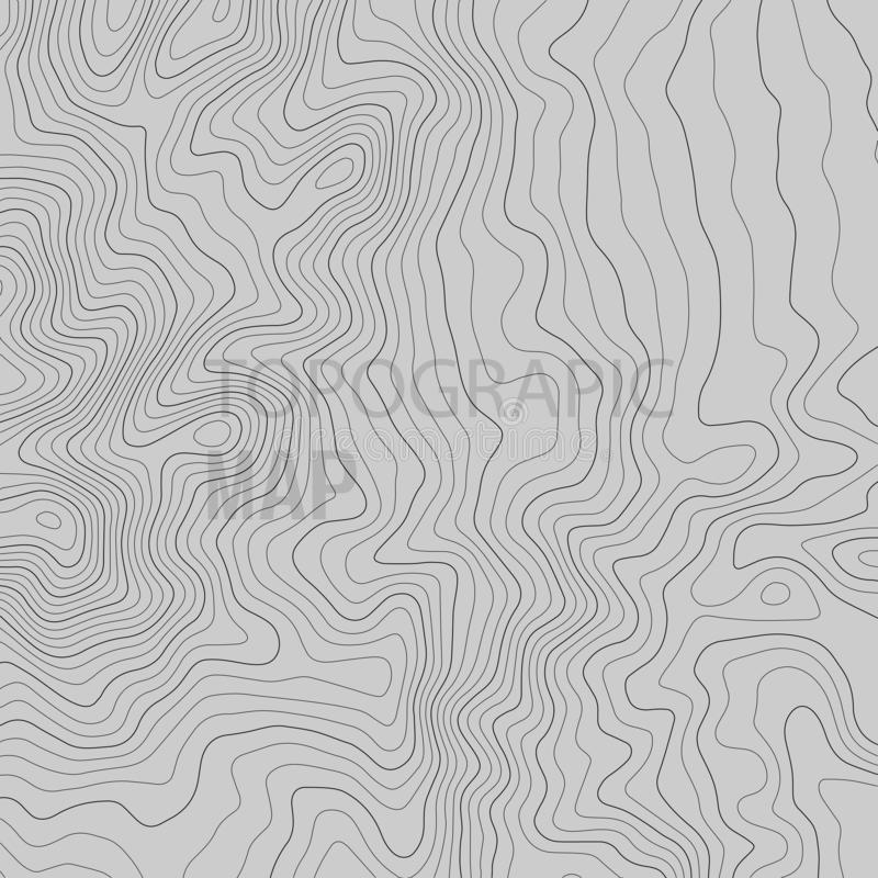 Topographic map lines background. Vector illustration vector illustration
