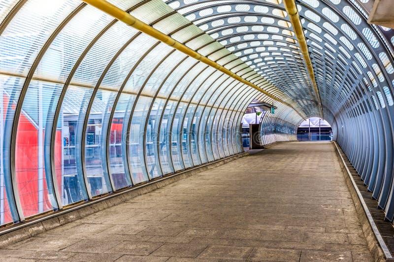 Topolowy Zwyczajny Footbridge zdjęcie stock
