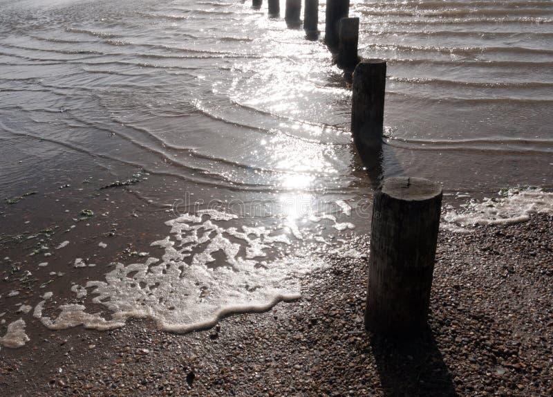 Topos de madeira do mar com água que forma e que espuma em torno da luz do sol fotos de stock royalty free