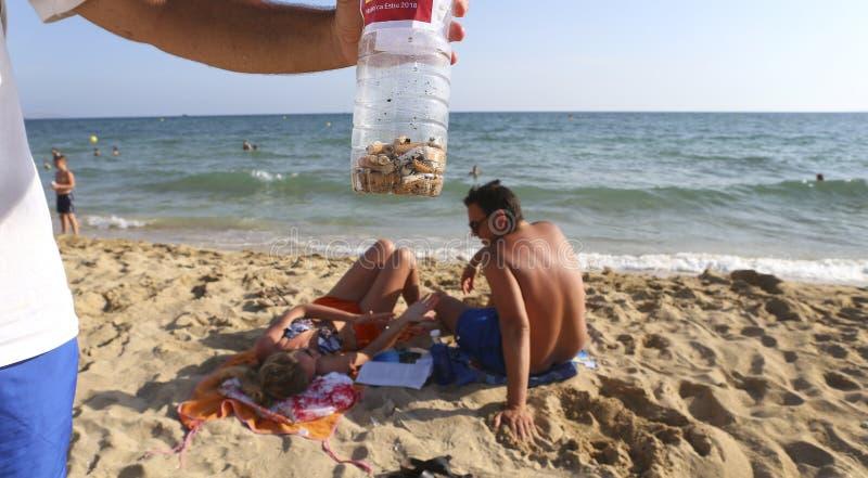 Topos voluntários de um cigarro da mostra escolhidos da praia durante uma limpeza ambiental na praia no detalhe de mallorca imagens de stock royalty free