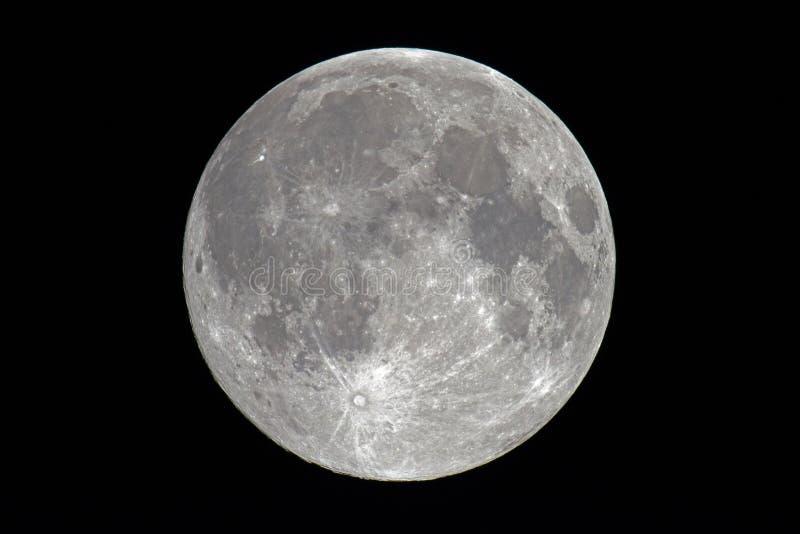 Toppen fullmåne arkivfoton