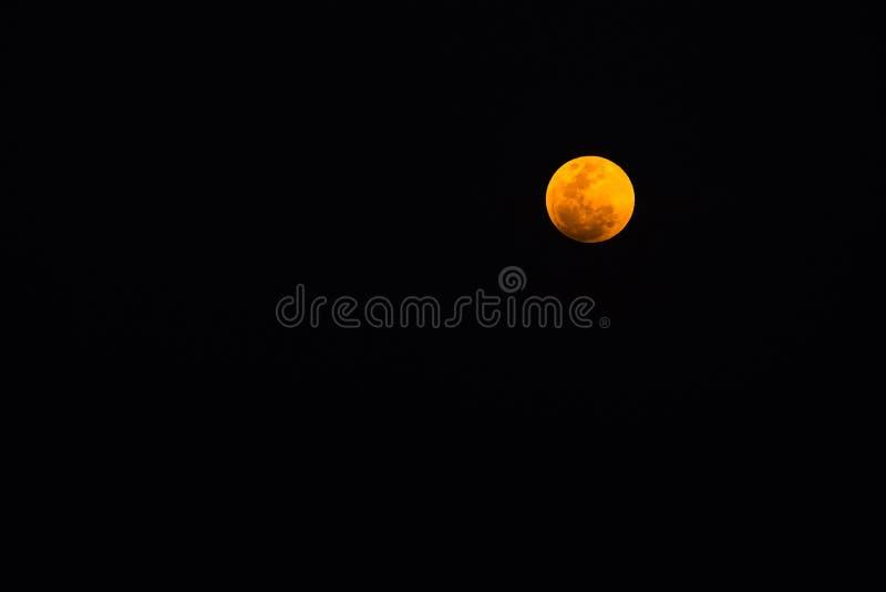 Toppen måne för blått blod av den sammanlagda månförmörkelsen på himlen Thailand arkivbilder
