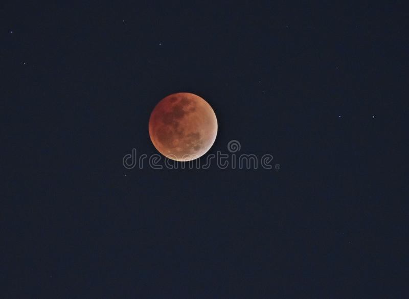 Toppen måne för blått blod i 31 01 2017 på 7 30 e.m. royaltyfria bilder