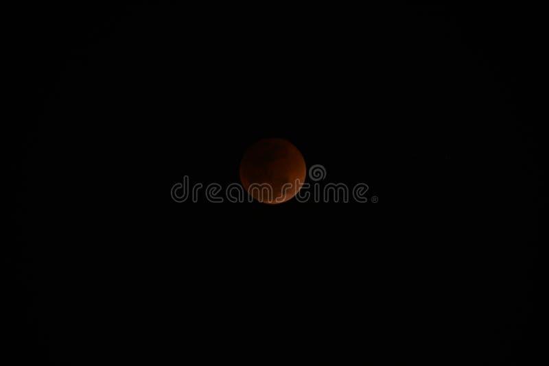 Toppen måne och månförmörkelse för blått blod royaltyfri bild