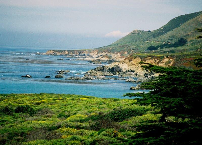 Toppen ojämn stenig stor kustlinje för hav Sur Kalifornien för blå gräsplan arkivfoto