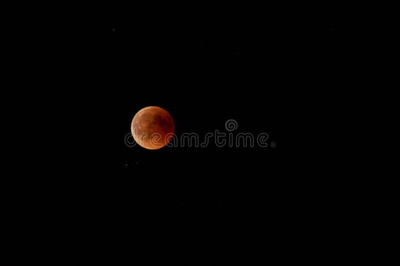 Toppen telephotobild av den toppna månemånförmörkelsen för blått blod arkivbilder