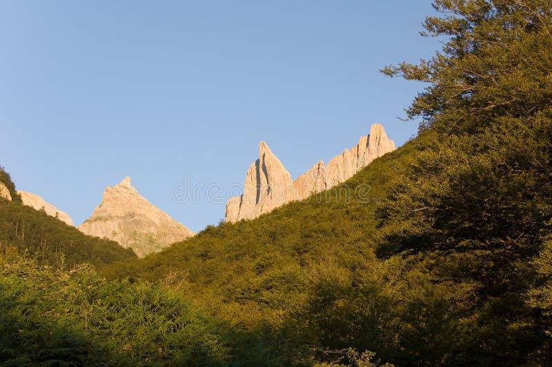 Toppen van de Pyreneeën over het bos royalty-vrije stock afbeeldingen