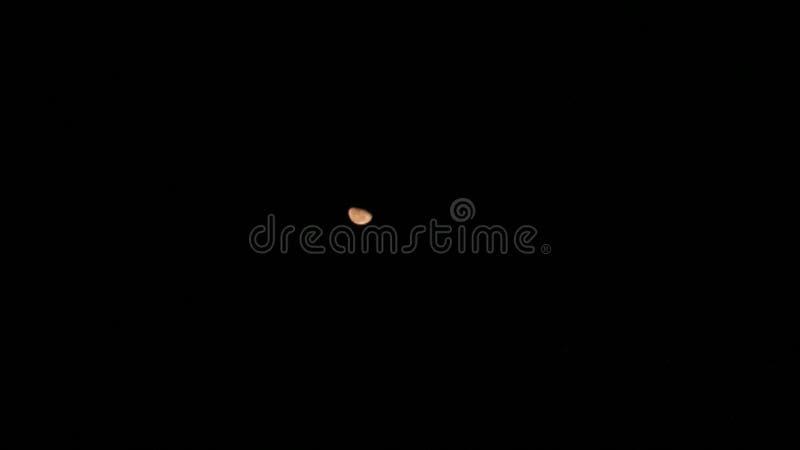 Toppen vargblodmåne royaltyfri fotografi