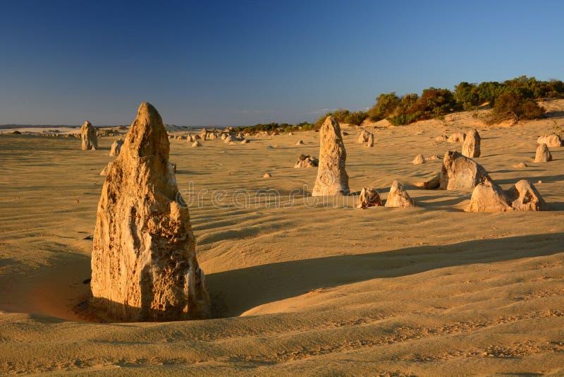 Toppenwoestijn bij zonsondergang Nambung Nationaal Park cervantes Westelijk Australië australië stock afbeeldingen