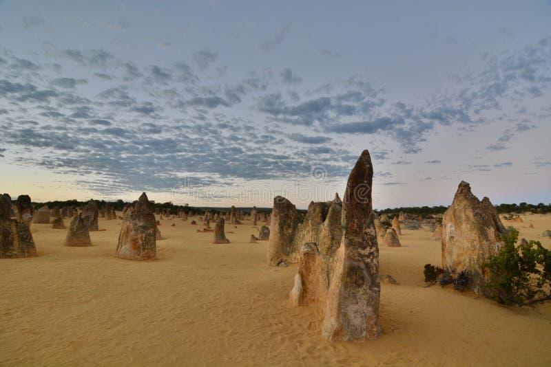 Toppenwoestijn bij zonsopgang Nambung Nationaal Park cervantes Westelijk Australië australië stock afbeelding