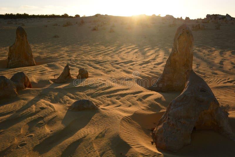Toppenwoestijn in zonsondergangtijd Nambung Nationaal Park cervantes Westelijk Australië australië royalty-vrije stock foto