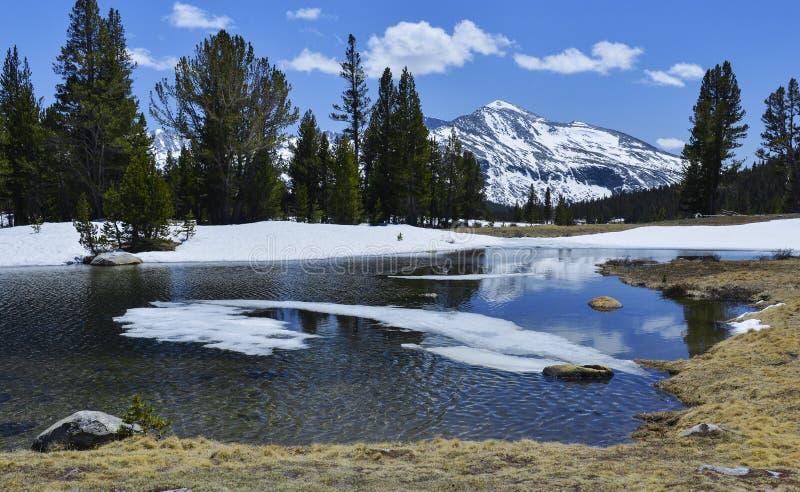 Toppig bergskedja Nevada royaltyfri fotografi