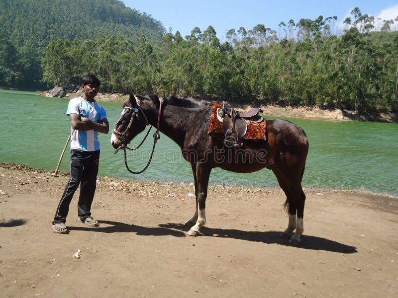 Topslip Kerala Indien 25. Januar 2014: Ein Pferdereiter, der auf sein folgendes tourister wartet stockfoto