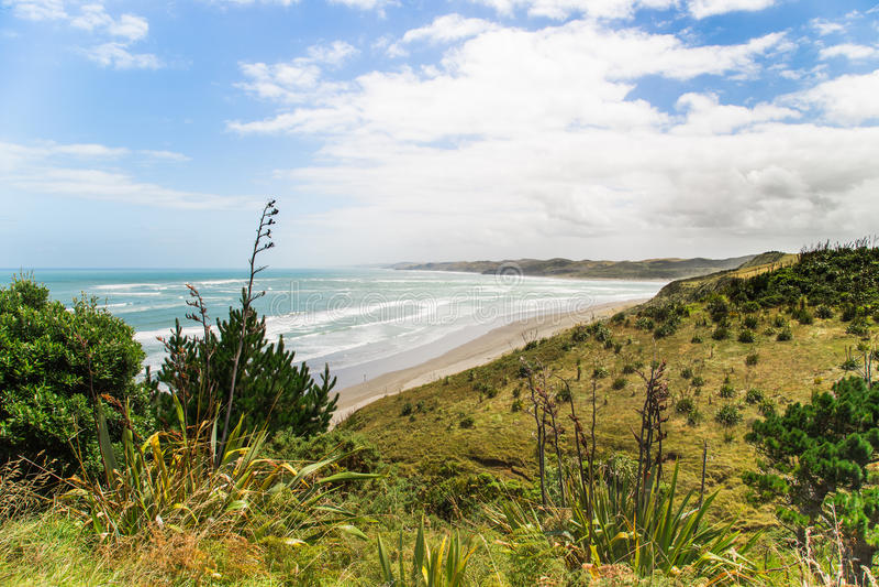 Download Topview On The Ngarunui Beach Near Raglan, Waikato Stock Photo - Image: 40072972